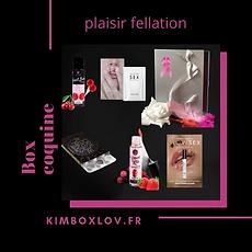 plaisirfellationkimboxlov_1024x1024@2x.w