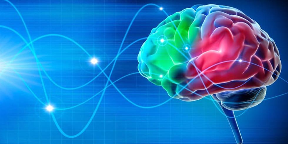 2ème Conférence 2020 :  Les ondes électromagnétiques sur notre santé