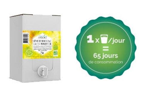 Sève de Bouleau lacto-fermentée 10 L (cure 65 jours)