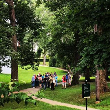 The City walking tour 8.5.jpg