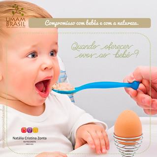 Quando oferecer ovos ao bebê?