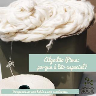 Por que o algodão pima é tão especial?