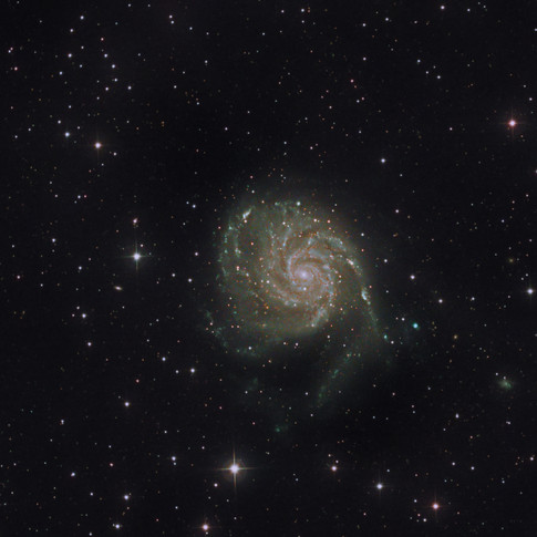 M101 02_05_21.jpg