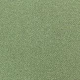 Vulcan Mint.jpg
