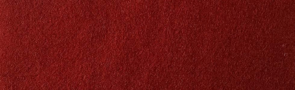 Blazer Scarlet CUZ13