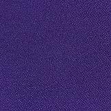 Vulcan Purple .jpg