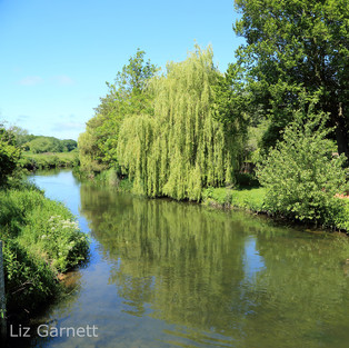 A view of the Great Stour river from Fordwich.