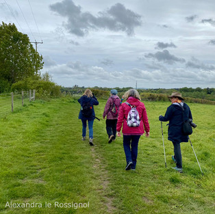 walk 8 alex 1.jpg