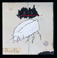 B is for Beetle