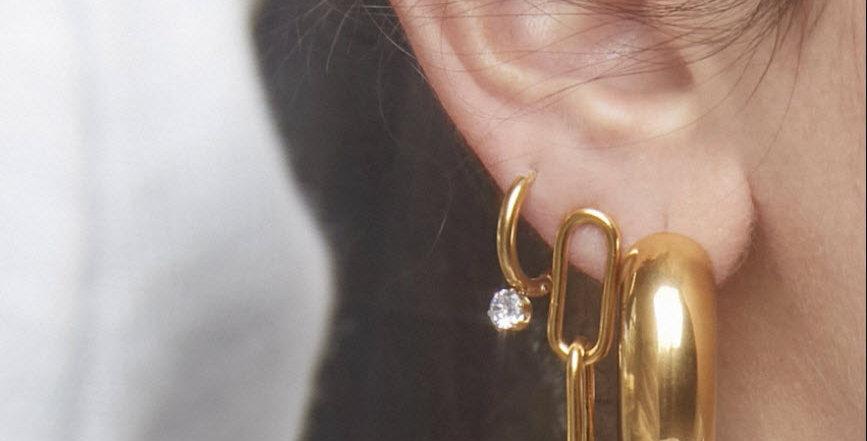 Carla Link Earrings