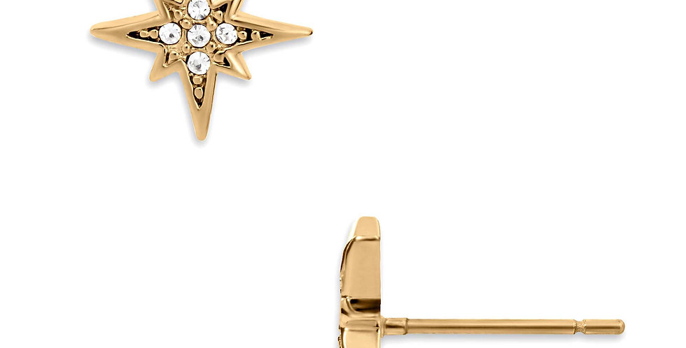 Dani Starburst Earrings
