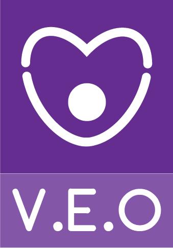 logo VEO.png