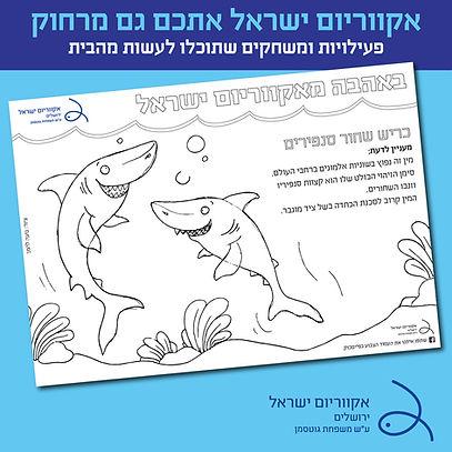 shark_coloring page.jpg