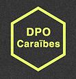 logo DPO Caraibes.png