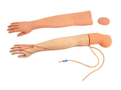 Multi-functional IV Training Arm