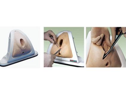 Episiotomy Training Simulator