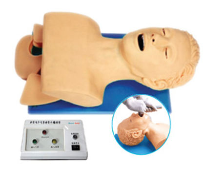 Airway Intubation Model