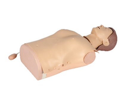 Half-body CPR Training Manikin