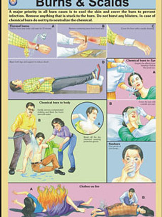 First Aid Charts - Set Of 15 Charts