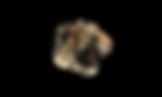Official-Tiger-King_Logo-Black-Text_1000