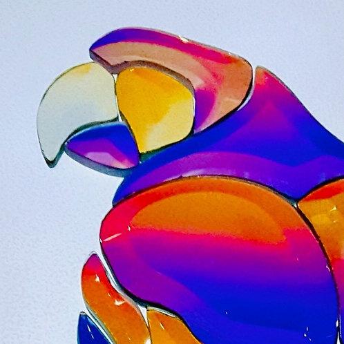 Dichroic Macaw