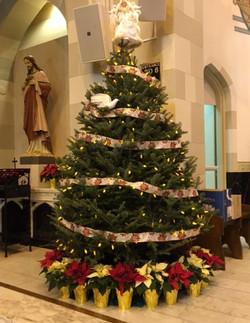 2015 Christmas Tree 1.jpg