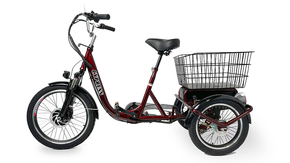 2020 Demo Electric Tricycle
