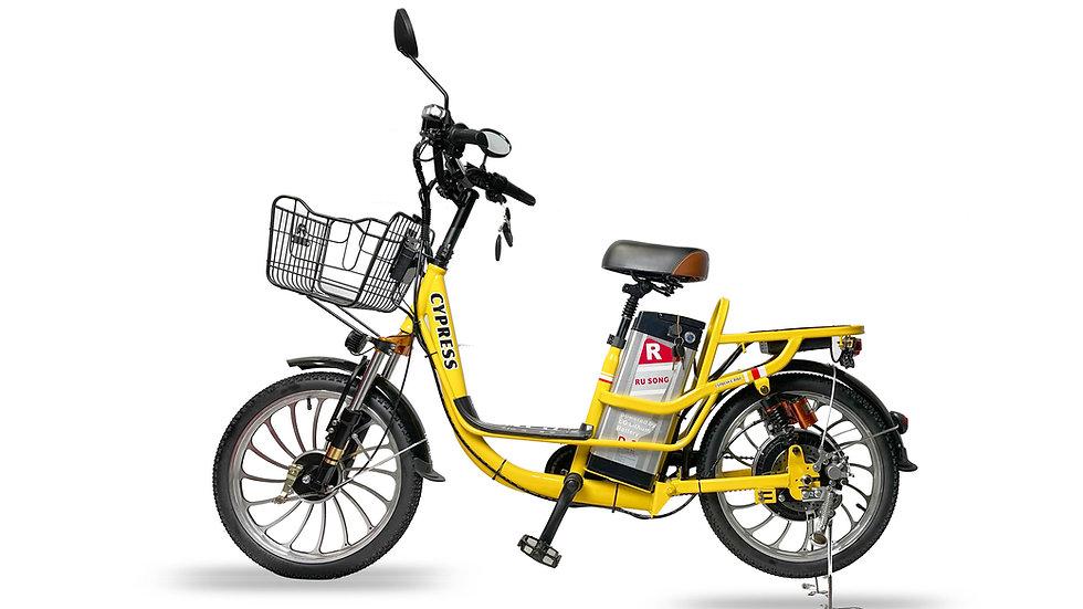 2020 Demo Electric Cargo Bike