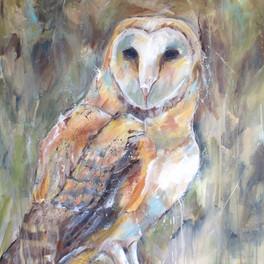GEORGIA BARN OWL