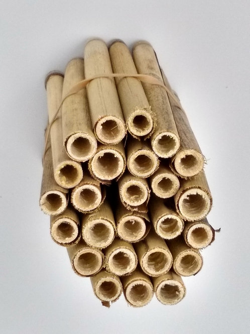 Replacement Reeds for Spring Mason Bees - 25 count