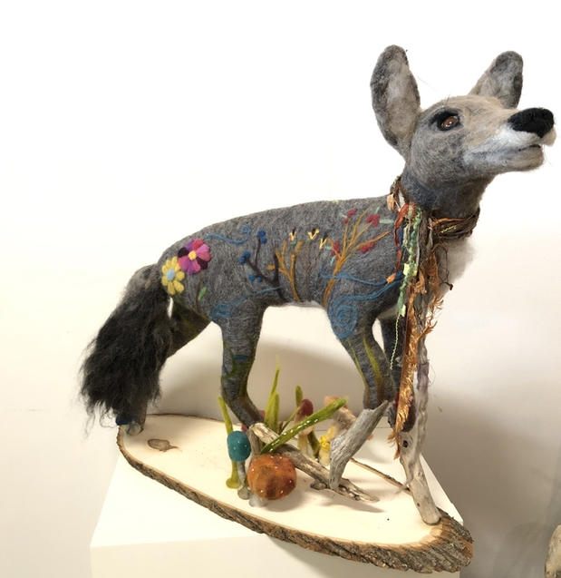 Coyote by Kyra Richter