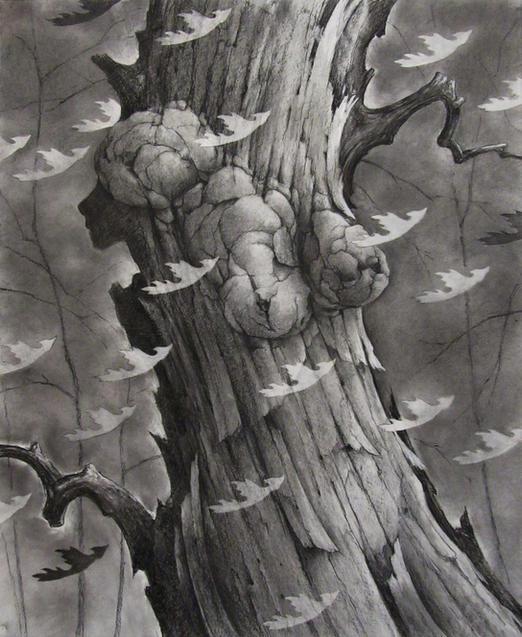 Broken Tree 13 by David Baker