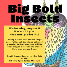 Big Bold Insects