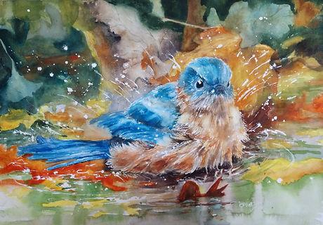 Aquatic_Bluebird_Guntzviller.jpg