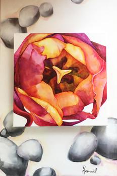 Jewel Set in Stones by Sabine Krummel
