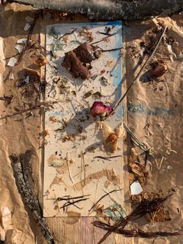 Sedimentary Memoranda by Sage Hagy