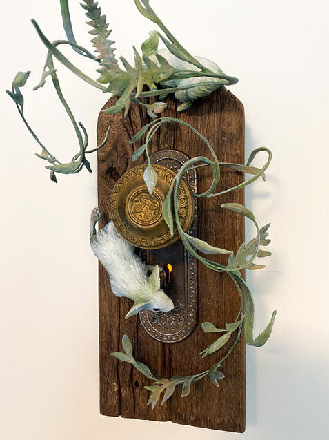 The Magician's Door by Anna Wooden