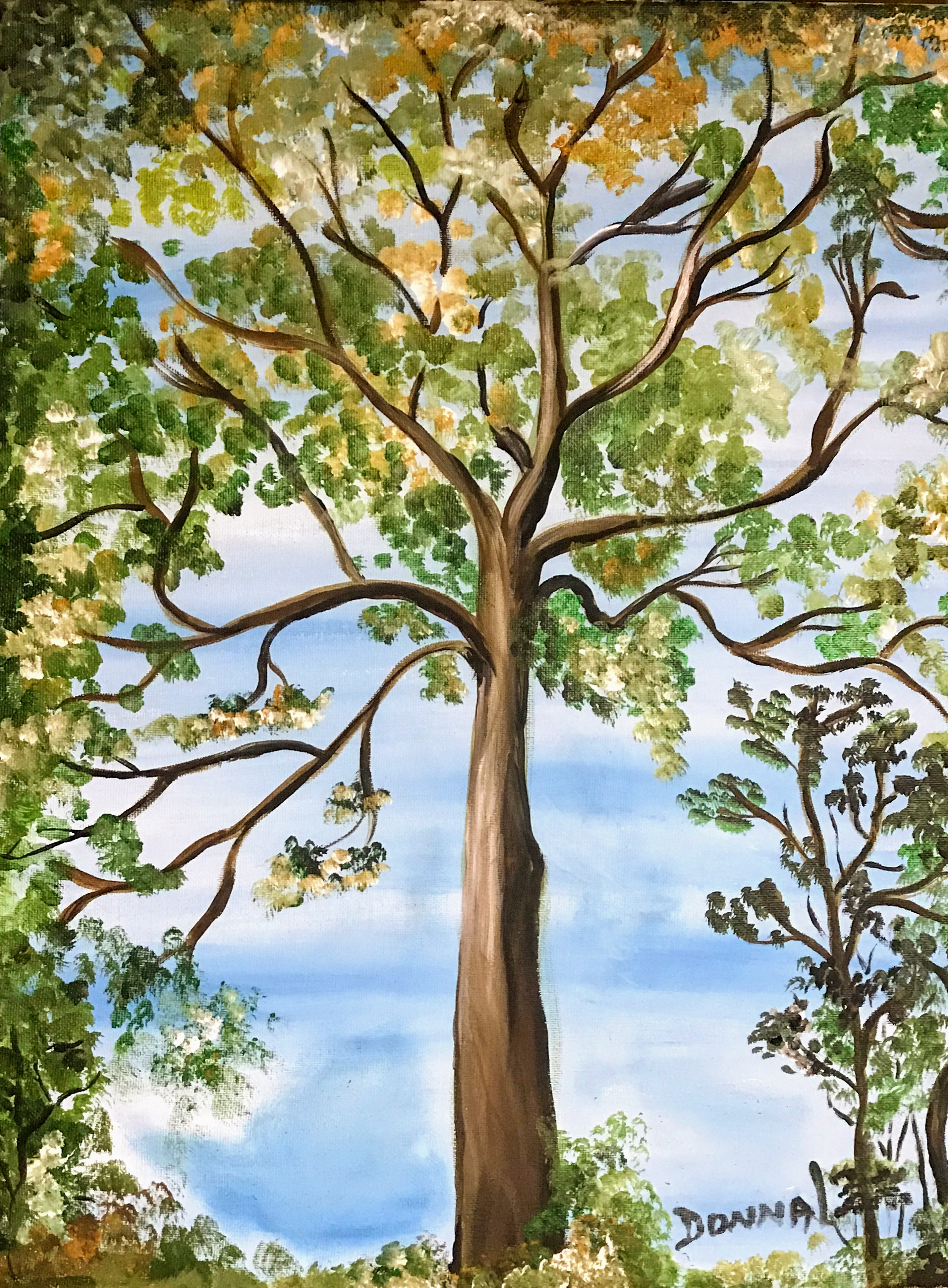 Trees #97