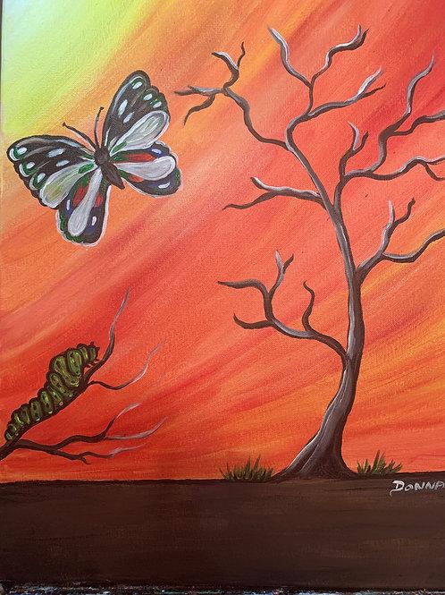 Butterfly #126