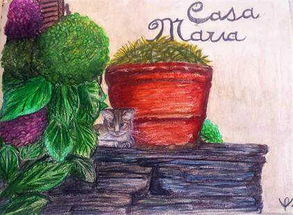 dessin personnalisé couleurs chat
