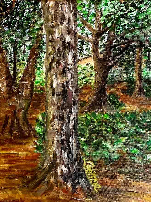 peinture-arbres-foret