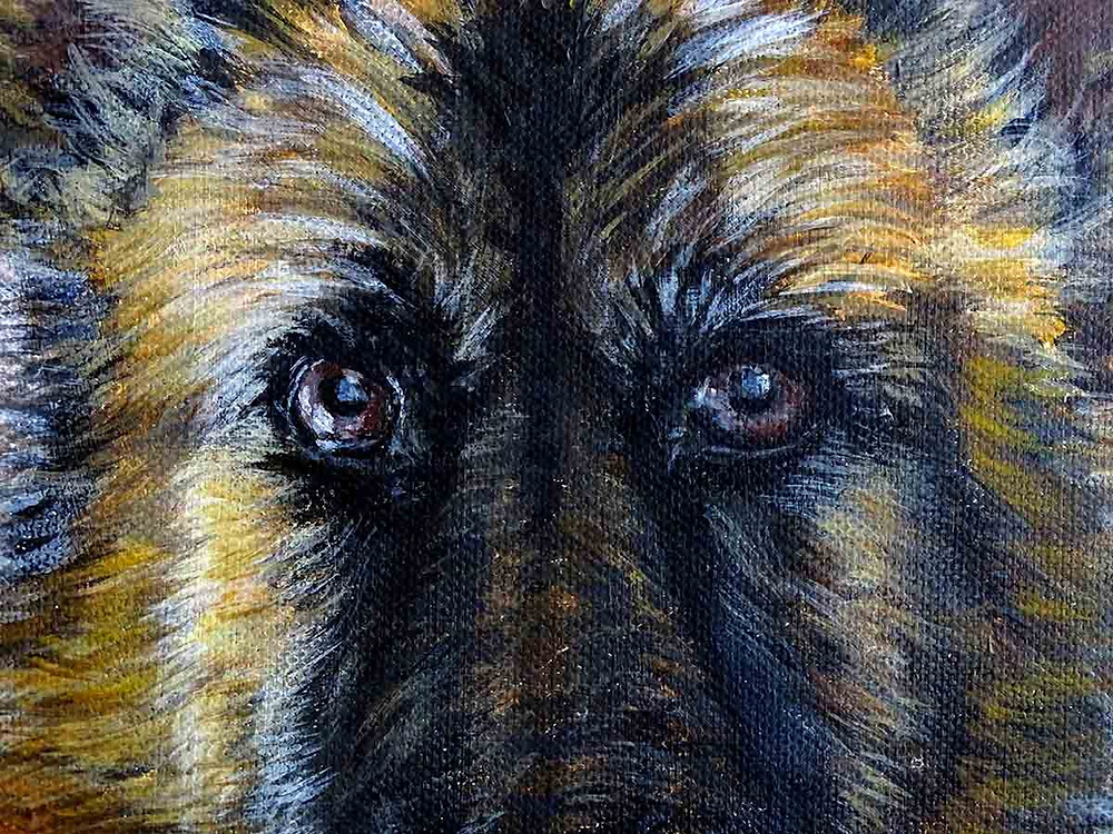 fourrure chien peinture