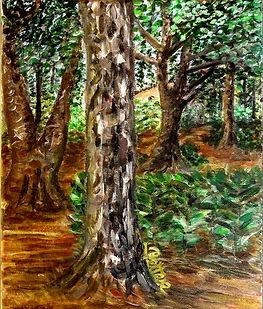 Peinture d'arbres pins forêt