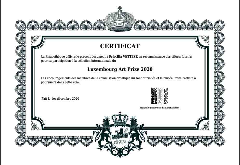 Certificat luxembourg art prize artiste