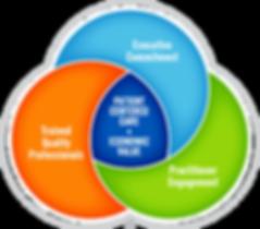 Quality Driven Healthcare (TM) model