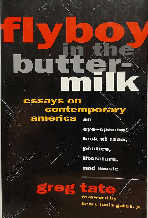 Flyboy in the Butter-milk, Essays on Contemporary America