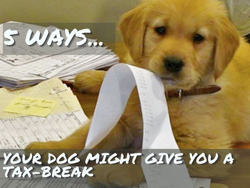 5 Ways your Dog Might Give you a Tax-Break!