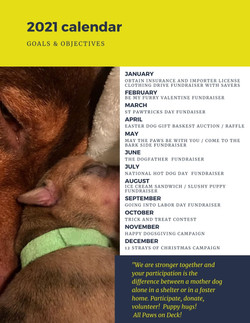 All Paws on Deck Dog Rescue Annual Report 2020 page 5