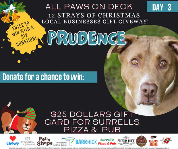 Day 3- Prudence