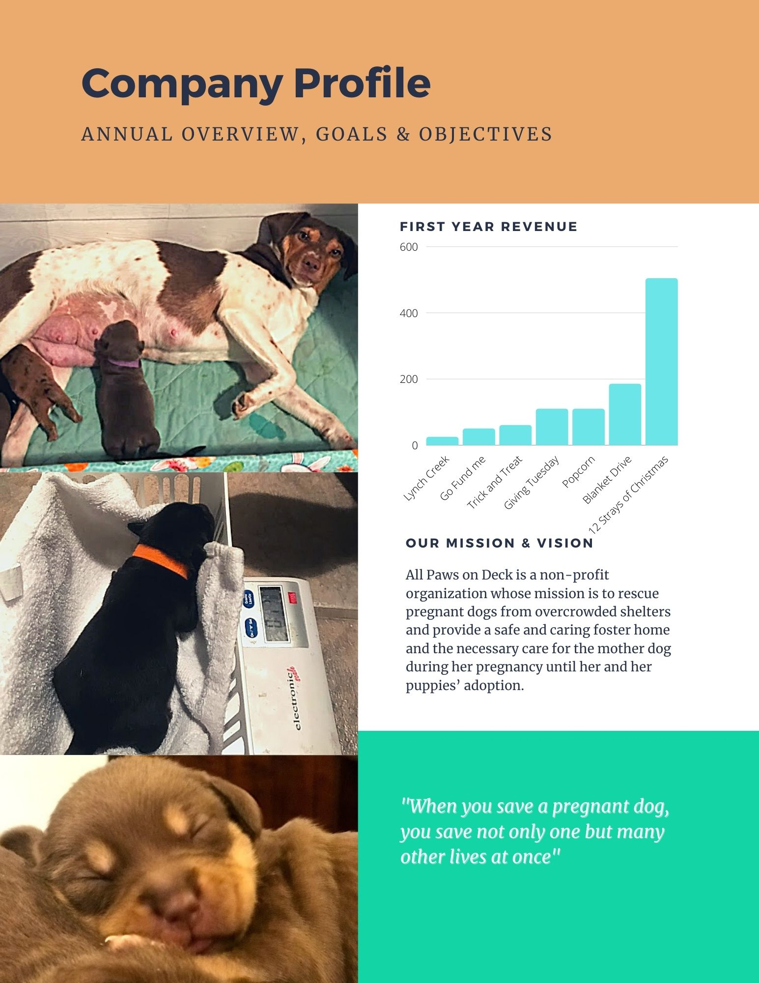 All Paws on Deck Dog Rescue Annual Report 2020 page 2